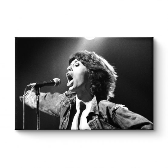 Mick Jagger - Canvas
