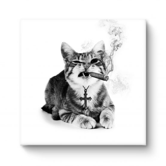 Smokey Cat - Canvas