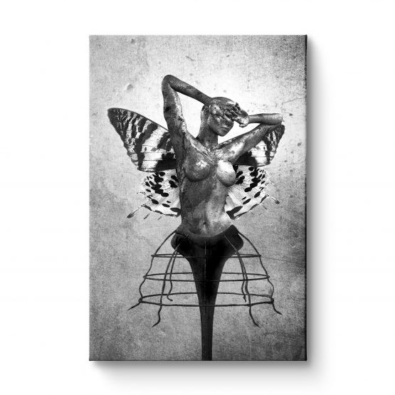 Scream Of A Butterfly - Canvas