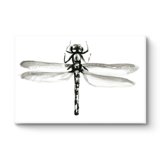 Dragonfly - Canvas