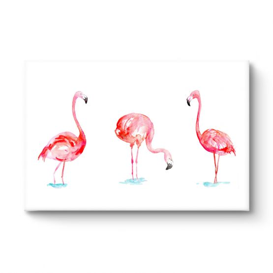 Flamingo - Canvas
