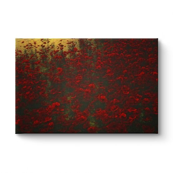 Poppies In The Rain - Canvas