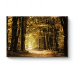 Indiansummer - Canvas